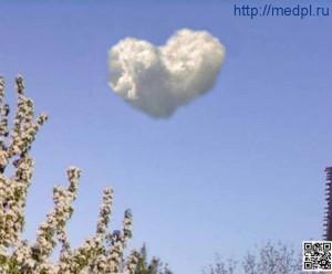 Предотвращение болезней сердца