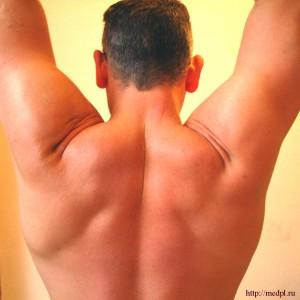 Мускульный тонус