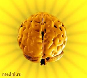 Мозг – инструмент исцеления