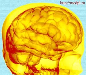 Как зарядить энергией мозг?